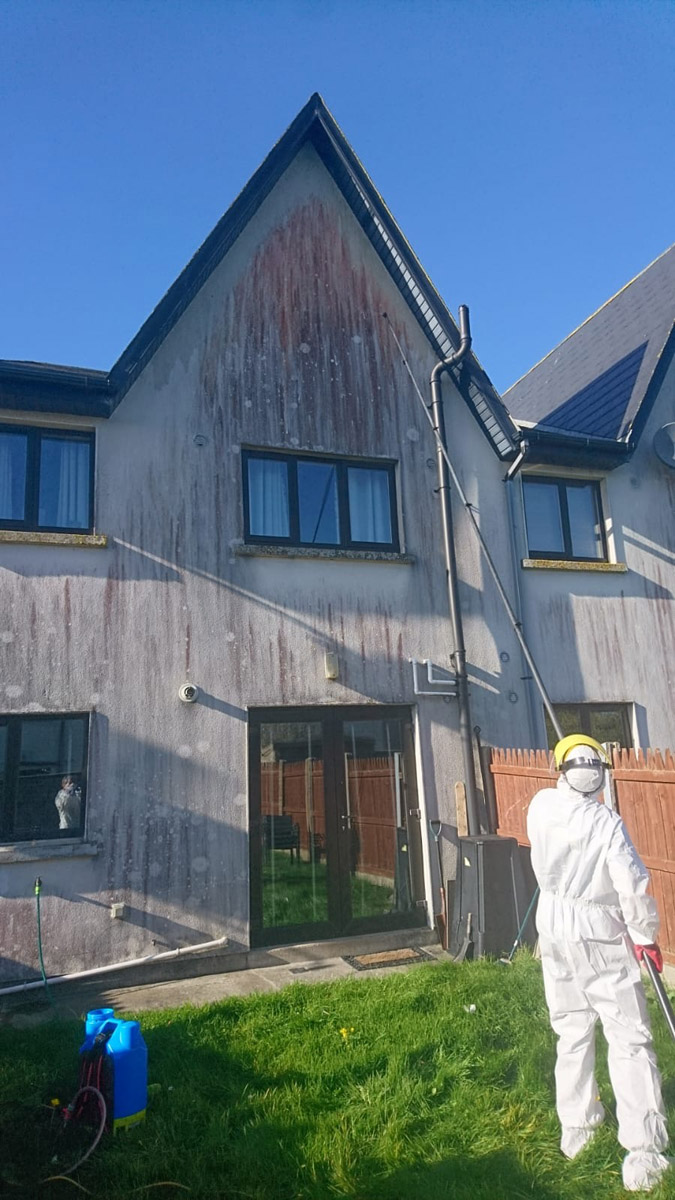 Easy Access Window Cleaning - Soft washing in West Lothian